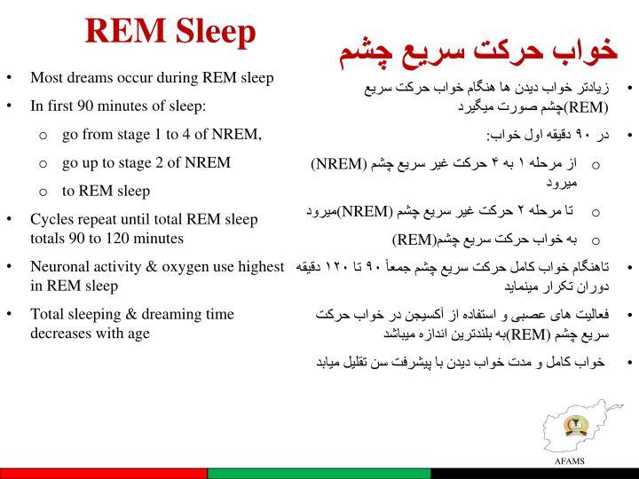 REM Sleep