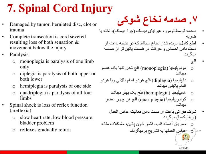 7. Spinal Cord Injury
