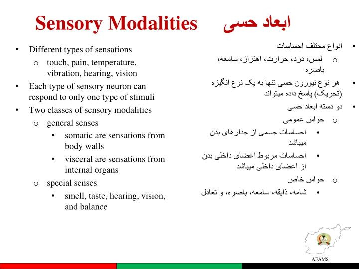 Sensory Modalities