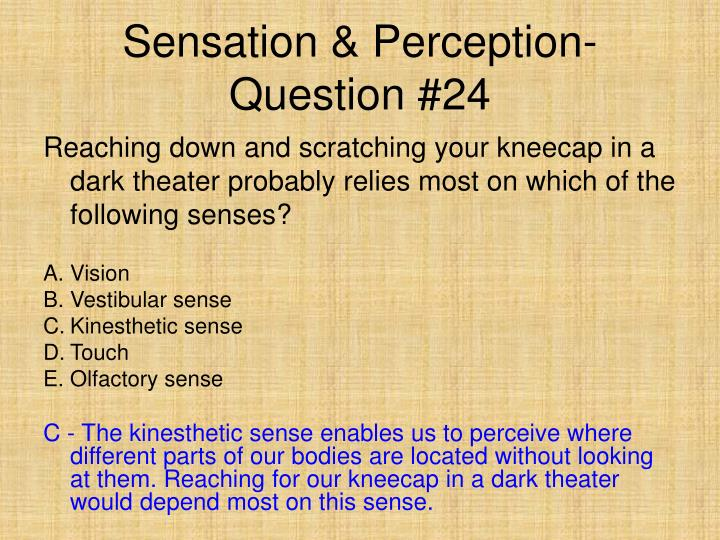 Sensation & Perception- Question #24