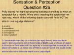 sensation perception question 26