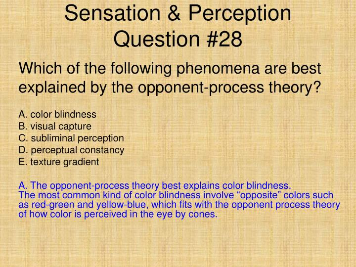 Sensation & Perception Question #28
