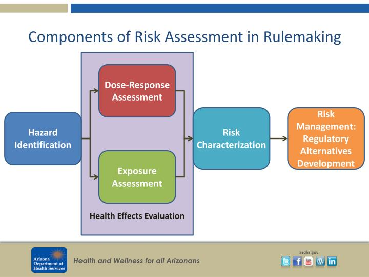 Components of Risk Assessment in Rulemaking