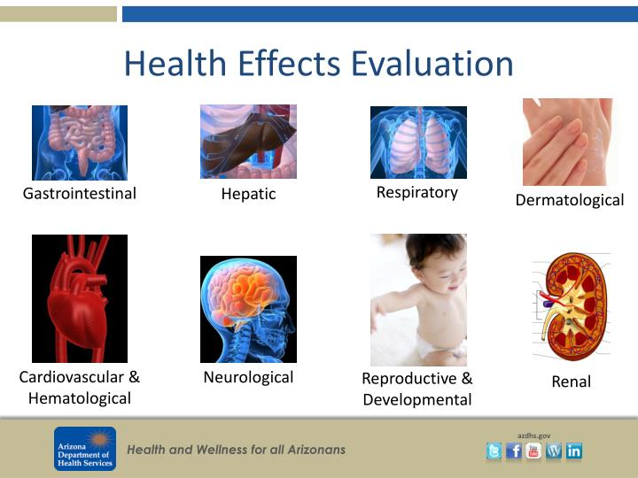 Health Effects Evaluation