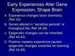 early experiences alter gene expression shape brain