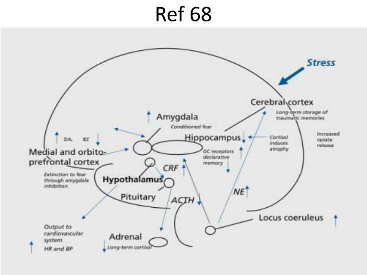 Ref 68