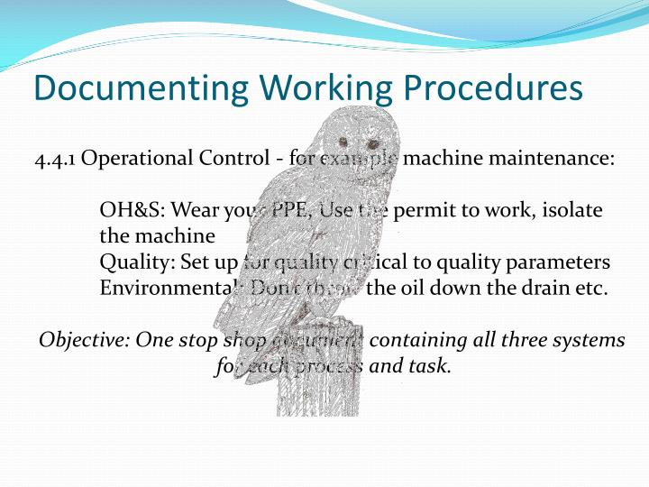 Documenting Working Procedures