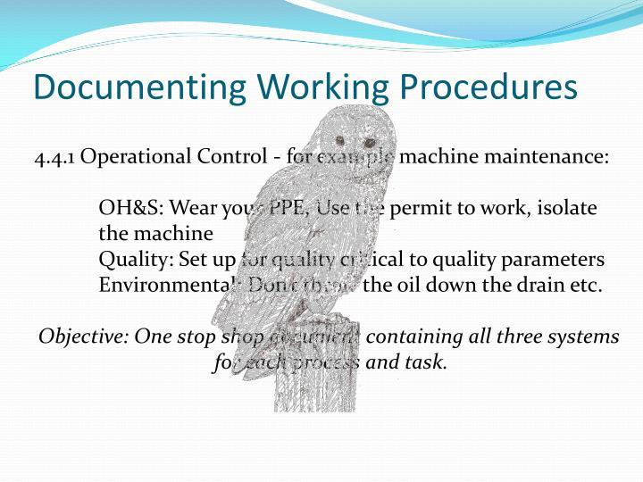 Documenting Working Procedures