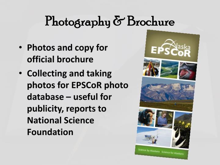 Photography & Brochure