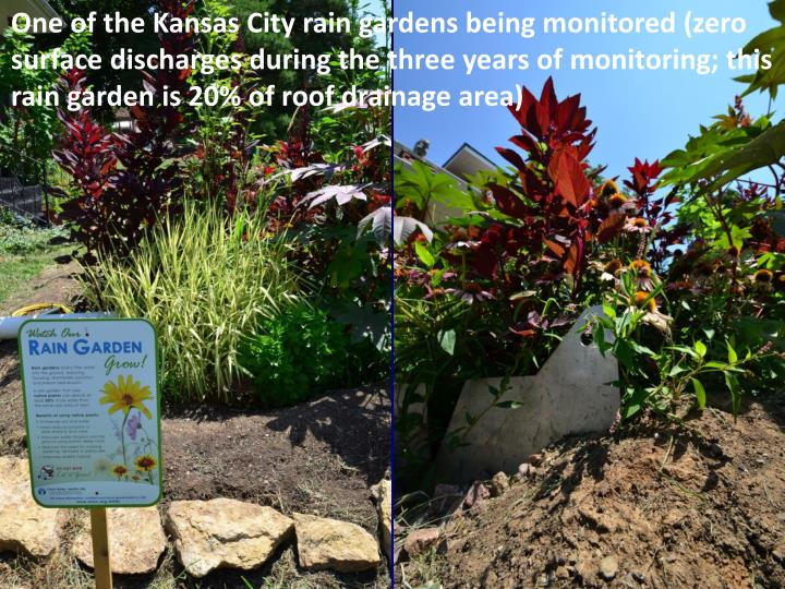 One of the Kansas City rain gardens being monitored (zero surface discharges during the three years of monitoring; this rain garden is 20% of roof drainage area)