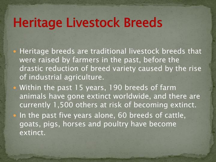 Heritage Livestock Breeds