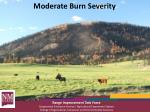 moderate burn severity1