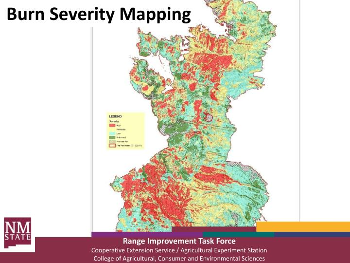 Burn Severity Mapping