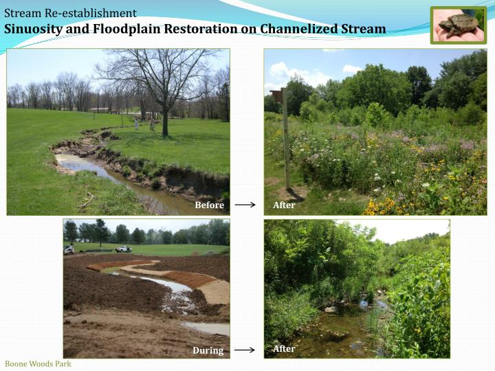 Stream Re-establishment