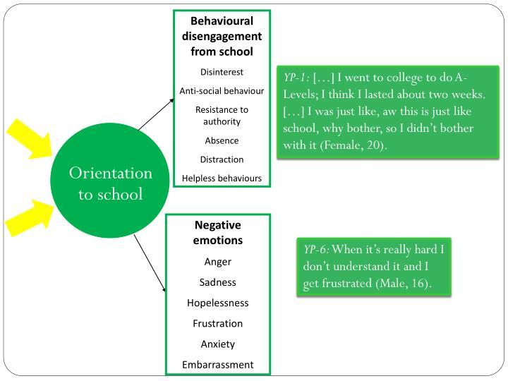 Behavioural disengagement from school