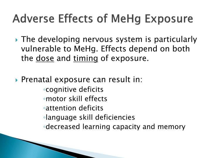 Adverse Effects of MeHg Exposure