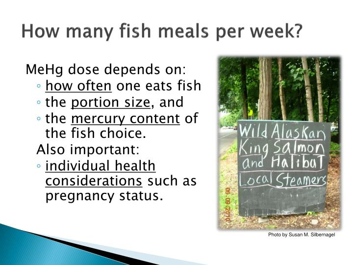 How many fish meals per week?