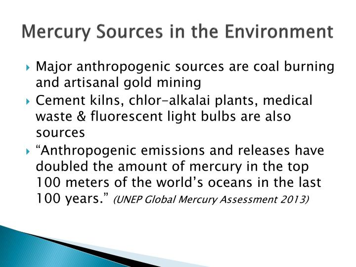 Mercury Sources in the Environment