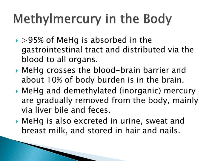 Methylmercury in the Body