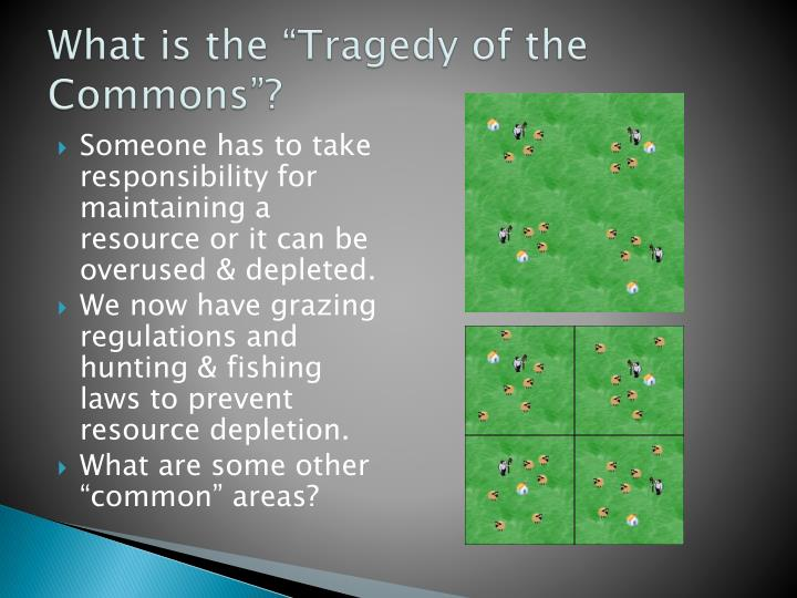 "What is the ""Tragedy of the Commons""?"