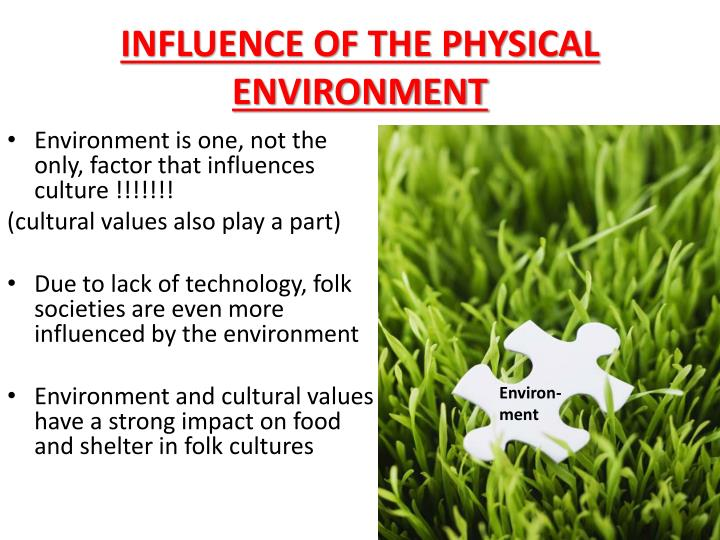 INFLUENCE OF THE PHYSICAL ENVIRONMENT