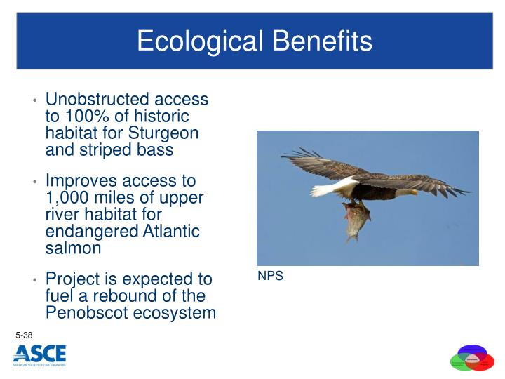 Ecological Benefits