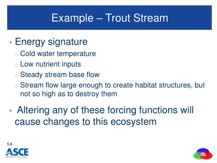 Example – Trout Stream