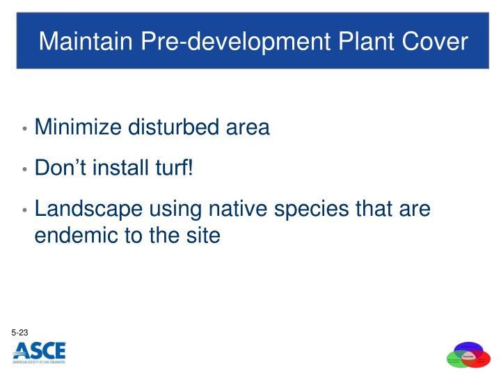 Maintain Pre-development Plant Cover