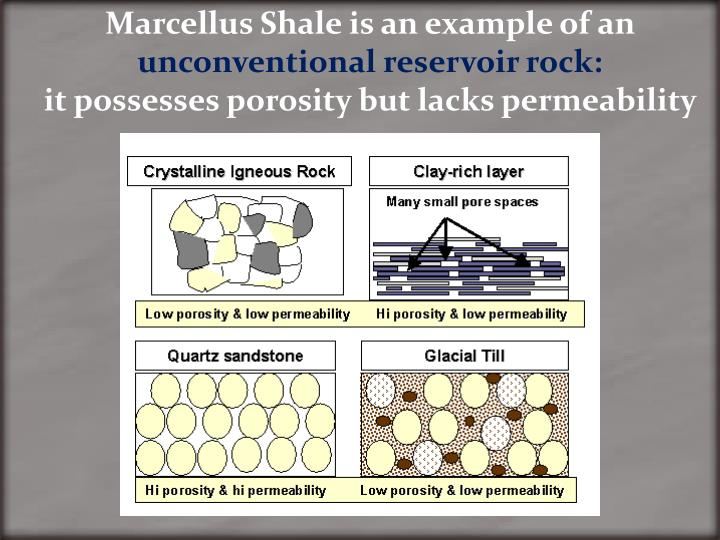 Marcellus Shale is an example of an