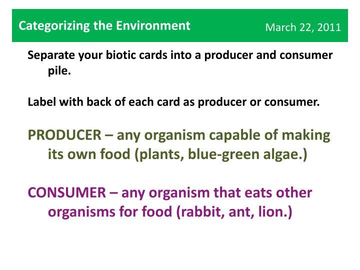 Categorizing the Environment