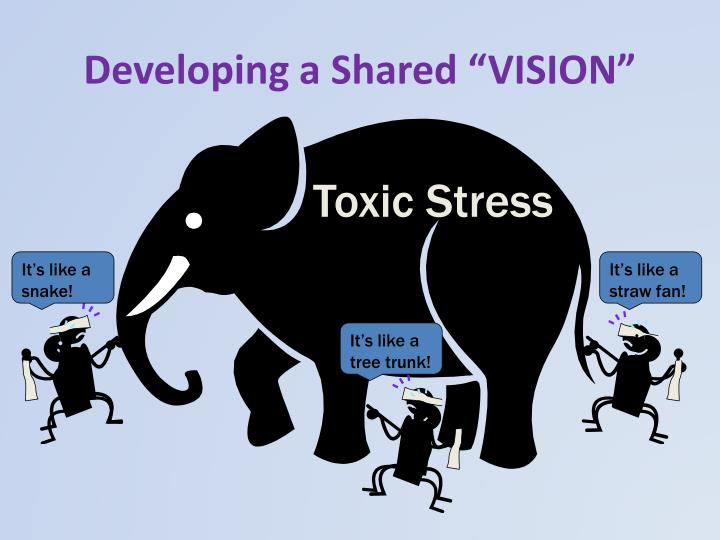 """Developing a Shared """"VISION"""""""