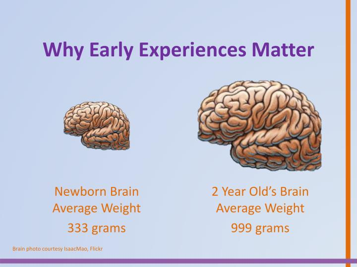 Why Early Experiences Matter
