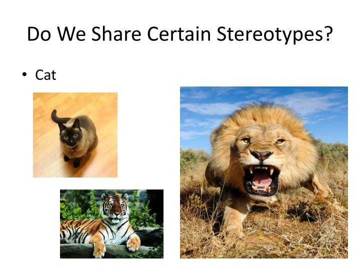 Do We Share Certain Stereotypes?