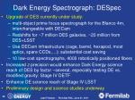 dark energy spectrograph despec