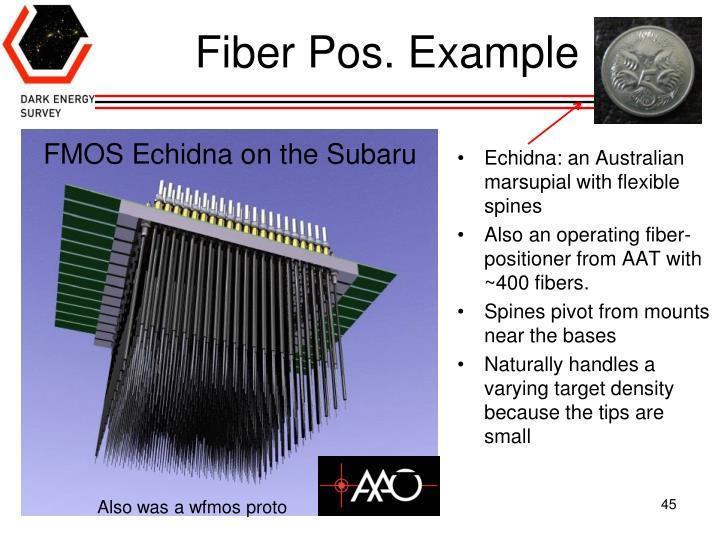 Fiber Pos. Example