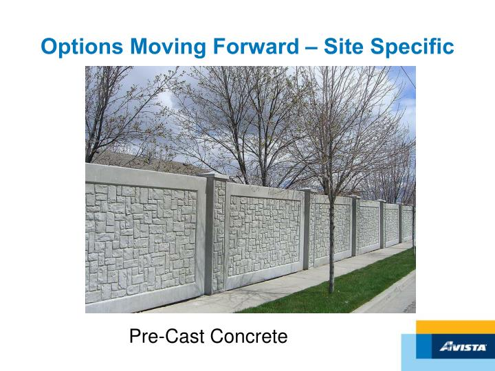 Options Moving Forward – Site Specific