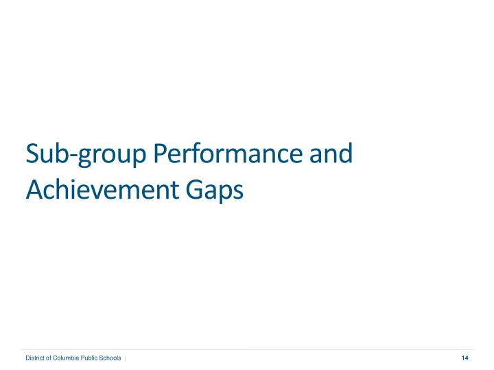 Sub-group Performance and Achievement Gaps