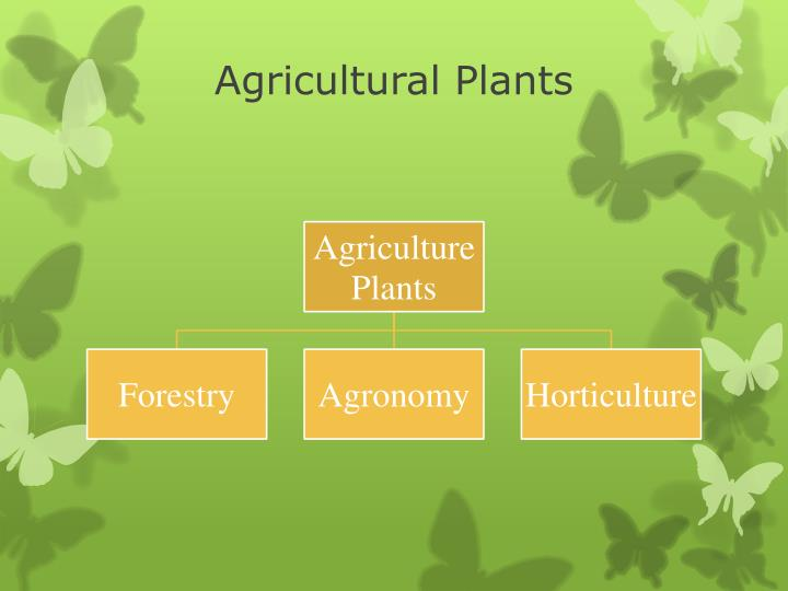 Agricultural Plants