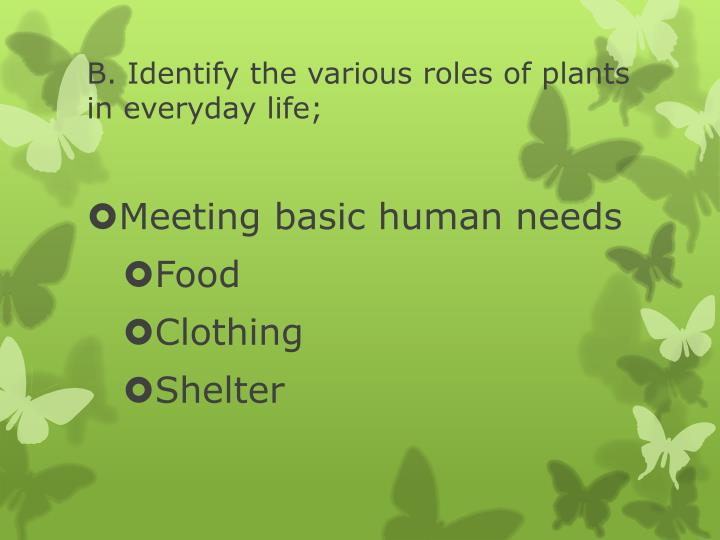 B. Identify the various roles of plants in everyday life;