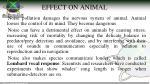 effect on animal
