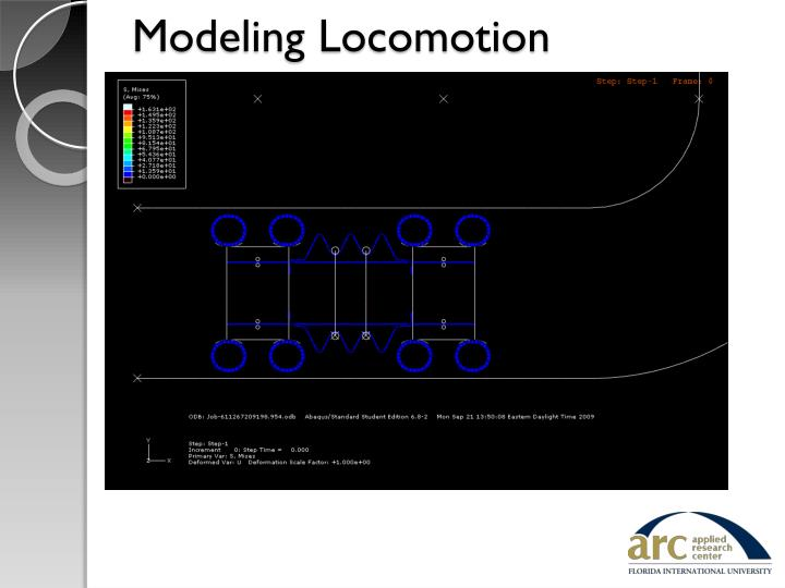 Modeling Locomotion