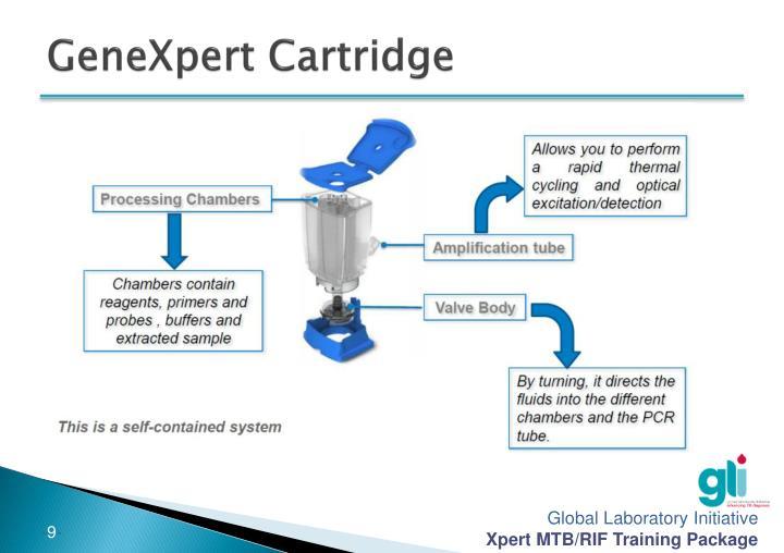 Ppt Module 6 Genexpert Technology And Xpert Mtb Rif