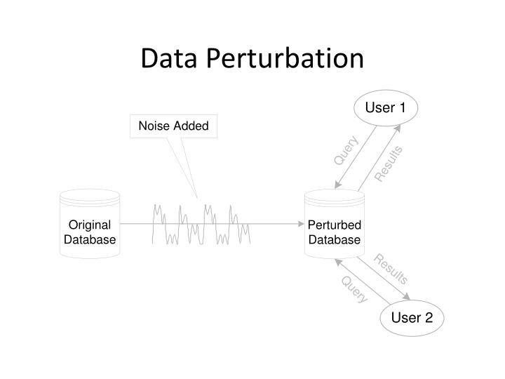 Data Perturbation