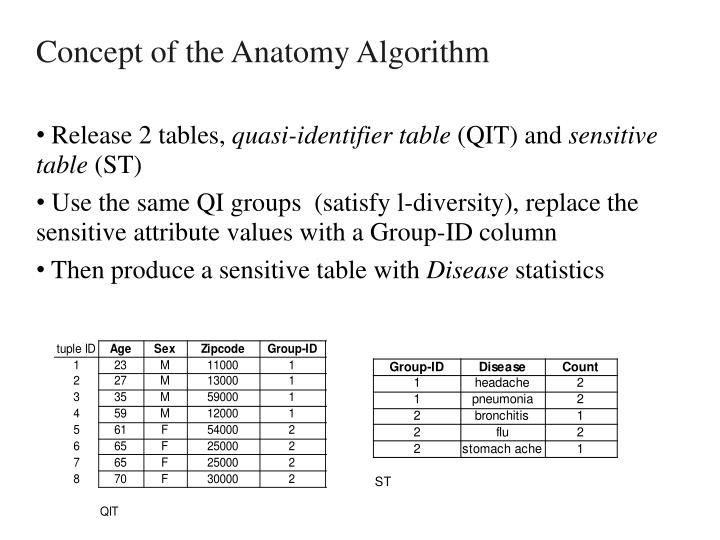 Concept of the Anatomy Algorithm