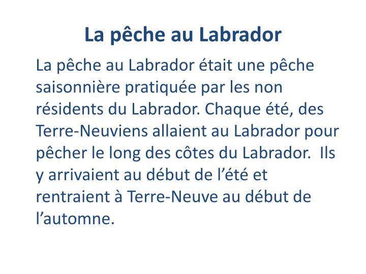 La pêche au Labrador