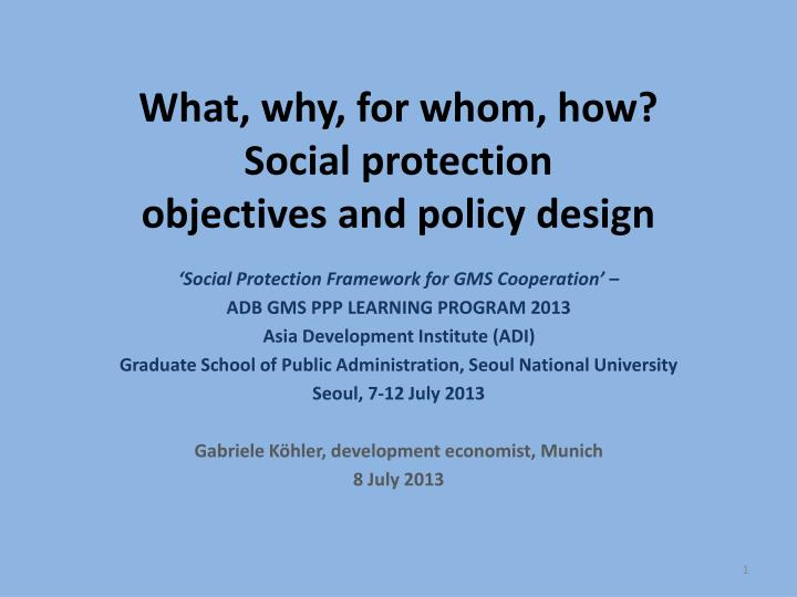 What why for whom how social protection objectives and policy design