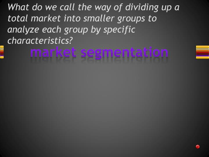 What do we call the way of dividing up a total market into smaller groups to analyze each group by specific characteristics?