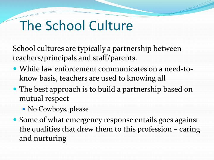 The School Culture