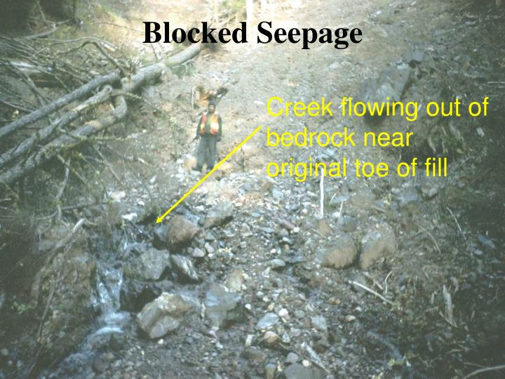 Blocked Seepage