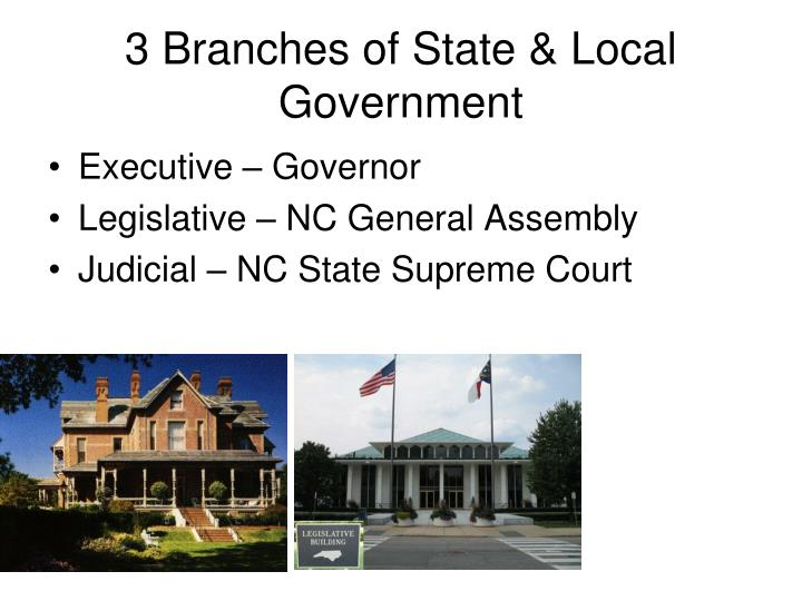 3 Branches of State & Local Government